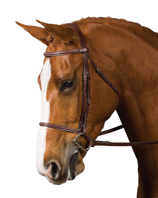 <b><i> Collegiate Plain Raised English Bridle in Brown</i></b>