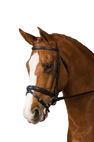 <b><i> Collegiate Padded Crank Bridle</i></b>