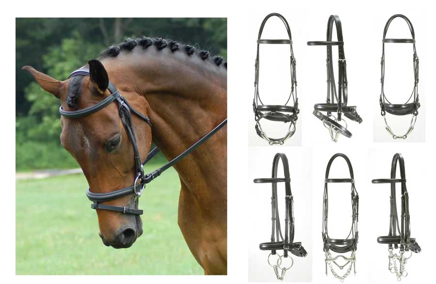 <b><i>Red Barn Centerline Dressage Bridle</i></b>