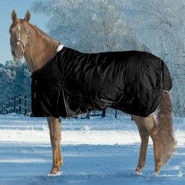 Turtleneck Horse Clothing
