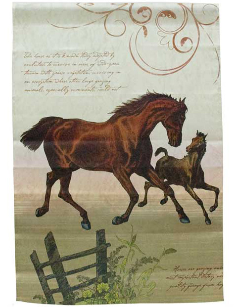 all about horses house flag about horses 477x621