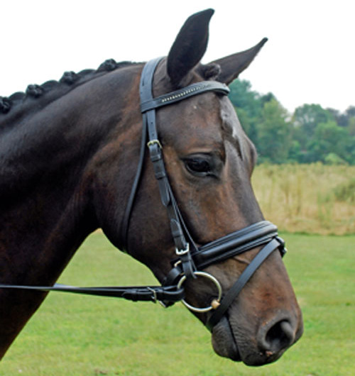 <b><i> KL Select Italia Pirouette Dressage Bridle </i></b>