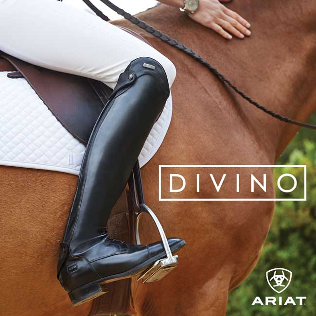 2ff28e66328 Ariat DIVINO English Riding Tall Boots for Women