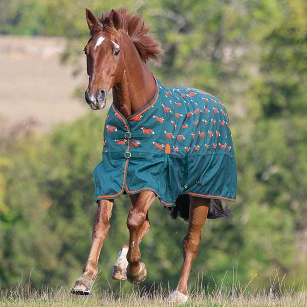 Shires Horse Blankets