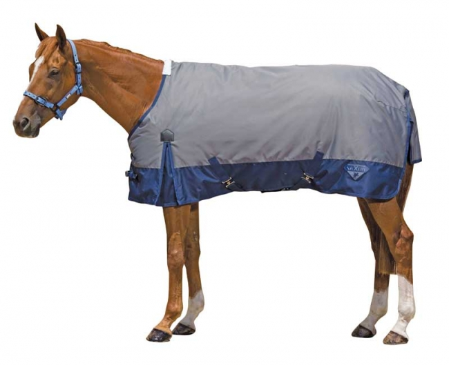 Saxon 600D Standard Neck Medium Turnout Blanket- Grey/Navy