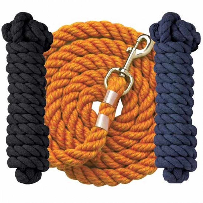 Perri's Lead with Chain