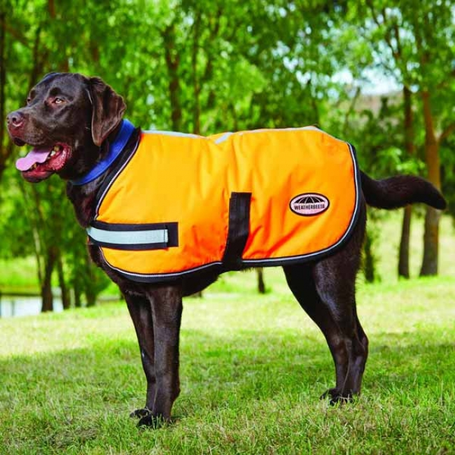 WeatherBeeta Orange Reflective Winter Dog Coat