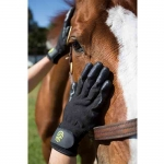 Hands On Gloves for Wet or Dry Grooming