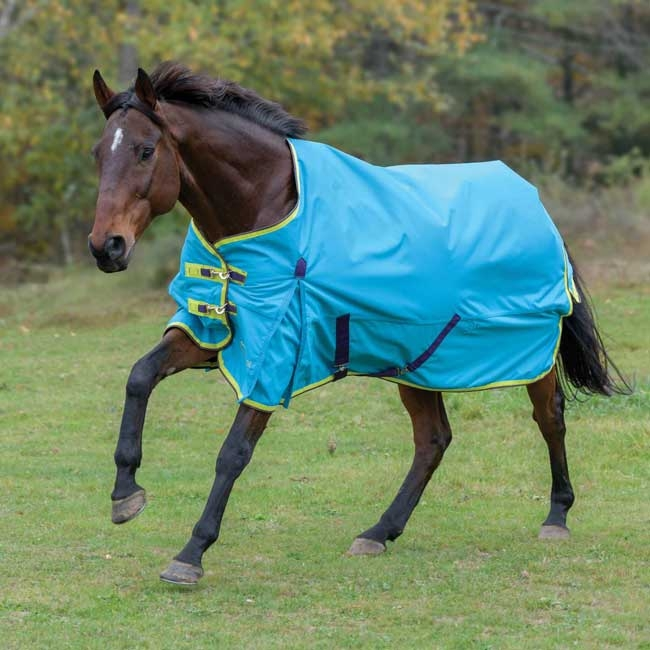 Shires Highlander 100 Gram Blanket