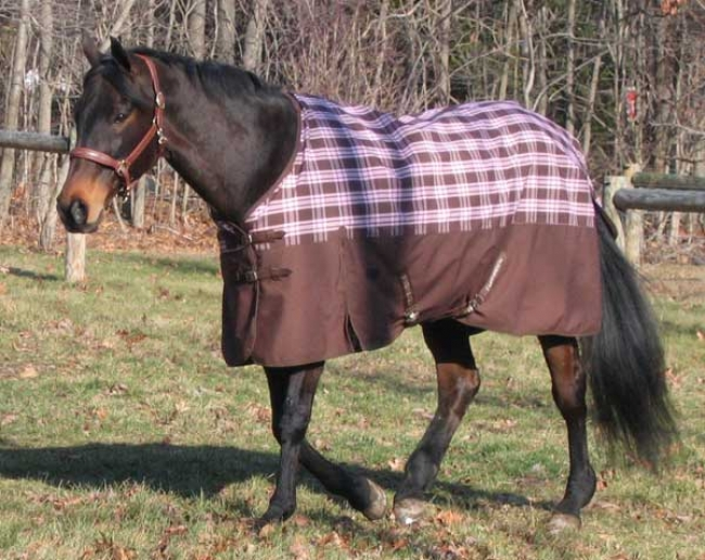 Tuff Rider Chocolate Pink Plaid Turnout Sheet
