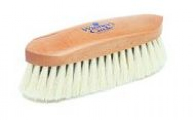 Winner's Circle Bleached Tampico-Soft Brush