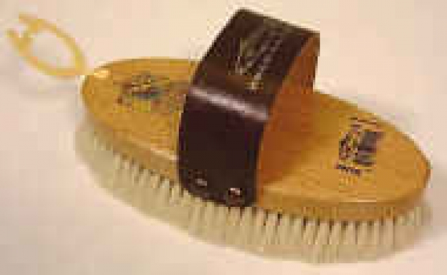 Medium Oval Soft Body Brush